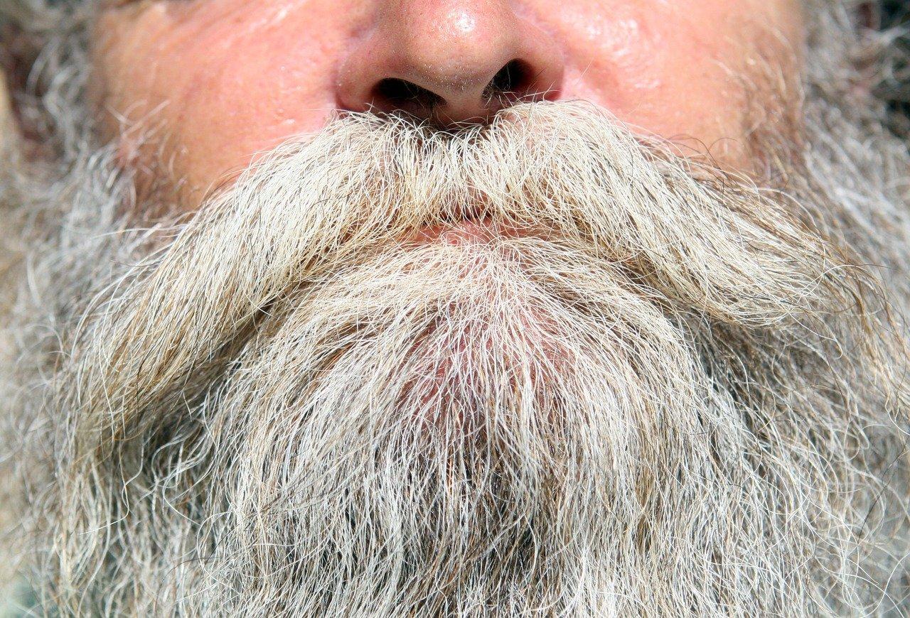 Grey Beard - Old Man