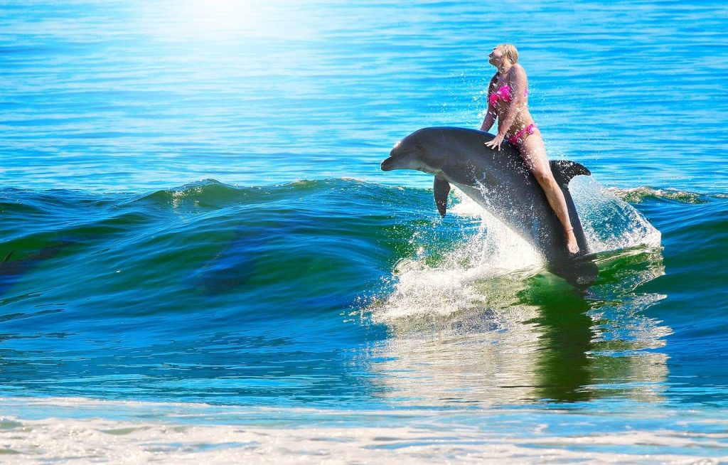 A woman riding a dolphin in the surf