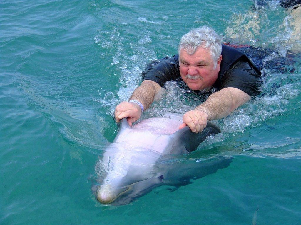 Man Riding a Dolphin